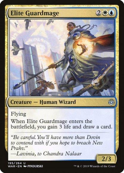 war-195-elite-guardmage